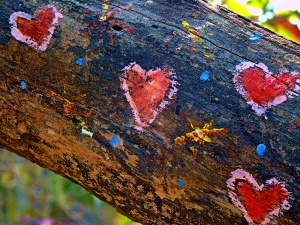 Log hearts