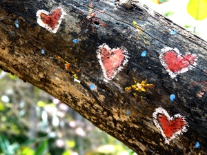 Hearts painted on a tree
